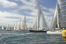 Immer größere Yachten auch bei der Altantic Rally for Cruisers (ARC). Die Durchschnittsgröße: über 15 Meter Länge. Vor 30 Jahren waren es noch elf Meter.